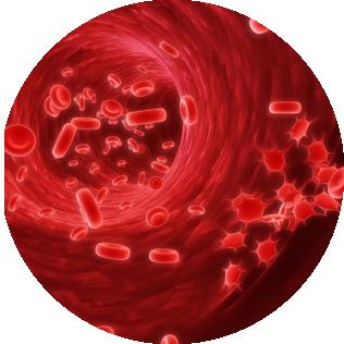 טכנולוגיה ביולוגית העושה שימוש בדגימת דם הנלקחת מהמטופל ומאפשרת ריפוי מחדש של הפצע.